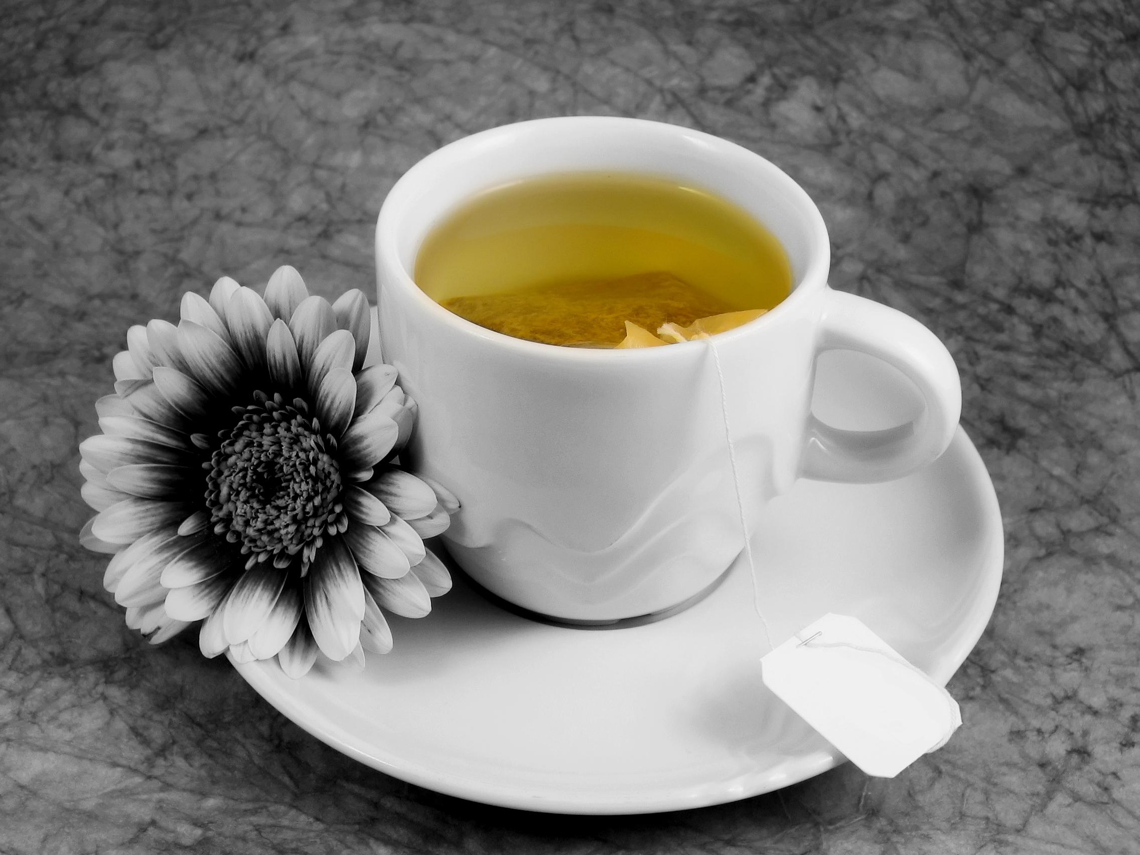 dreamstimefree_699252-cup-of-tea-with-flower.jpg